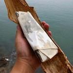 扇鶴 - 耐水紙内装