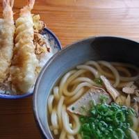 屋久どん - うどんのAセット(屋久島うどん➕ミニエビ天丼) ¥1050