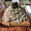 くれ竹 - 料理写真:ざるそば(並)。大盛りではありません。