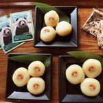 上野動物園 バードソング - これも上野動物園に来たら毎回食べてるパンダだんご450円。パンダが食べてる栄養補助食のパンダ団子を人間用に作り直したものなんだよ。