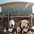 上野動物園 バードソング - お昼ごはんは園内でいただくことに。東園にある藤棚休憩所売店『バードソング』だよ。