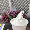 山川牧場ミルクプラント - 料理写真: