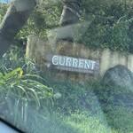 カレント -