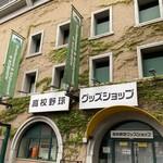 156496064 - 阪神甲子園球場の目の前です。