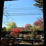 15661037 - 窓から外を見ると、紅葉が。