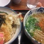 15663071 - 2012年11月天丼定食