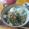 そば処小代 - 料理写真:冷たい山菜そば大盛