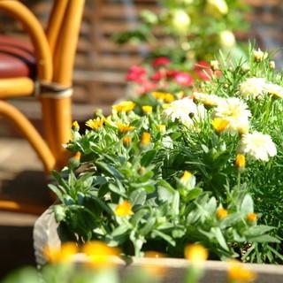 新宿御苑の四季の景色を眺めながら…二次会にご利用ください♪