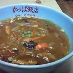 15676160 - カレー味広東麺(花巻ひえカレールー)
