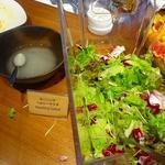 カフェセリ - サラダ