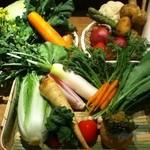 お野菜びすとろ 志あわせ - 採れたて新鮮お野菜たち
