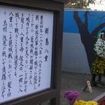 15697343 - 新島八重(二本松菊人形)