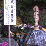 15697345 - 観世音菩薩(二本松菊人形)