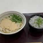 つるこし - 料理写真:やまと芋とろろうどん(690円)と白子丼(400円)