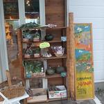 オーガニック七菜 - 店頭の野菜コーナー