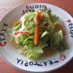 15729786 - スペシャルランチのサラダ