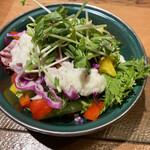 ザミートダッチ - セットのサラダ