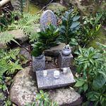元祖瓦そば たかせ - 庭の水神様