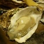 15736548 - 2012.11 北海道産の生牡蠣も頂きました。