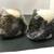 おにぎり屋 青竹 - 料理写真:梅(150)&鮭(190)
