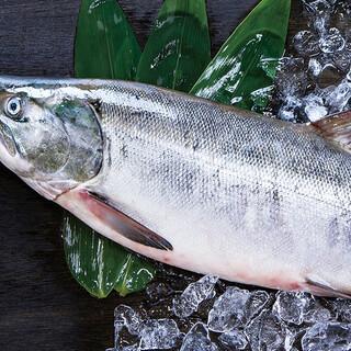 9月オススメ食材〈北海道の秋鮭〉〈桃〉ディナー限定でご提供★