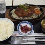 上河内SA 下り線 フードコート - 料理写真:あさの豚鉄板ハンバーグ定食