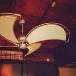 Cham - ダルトン社のシーリングファンはゆったりした空間を演出