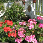 キッチン 赤いフォーク - 花いっぱいのお庭を散策するのも楽しみのひとつ