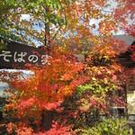 15834620 - 看板が見えてきます。紅葉がキレイ~
