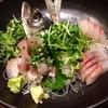 斗と乃蔵 - 料理写真:高知天然ヒラマサ刺