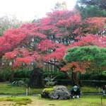 嵯峨野 - お店の庭園