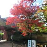 嵯峨野 - 宝厳院紅葉