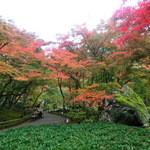 嵯峨野 - 宝厳院紅葉(もうひとつですね)