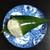 大國屋 - 料理写真:ふまんじゅう