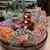 リンツ ショコラ ブティック - 内観写真:リンドールがずらりと並ぶ店内