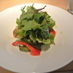 15888830 - 野菜サラダ