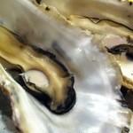 15897342 - 焼き牡蠣