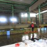 新島水産 - 水産場の様子。