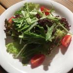 ボナ フォルケッタ - 料理写真:サラダ