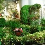 BAR INSIDE SATIE - イルミネーションが煌く光の庭園です。