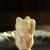 くらわんか餅の世界 - 料理写真: