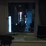 15981153 - 客室からの風景