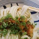 うどん工房 天空 - 美しい麺