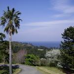 160779 - サンパーラー(川奈ホテル):窓外の眺め①