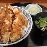 16019595 - 天丼