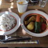SOUP CURRY S*pice - 料理写真:チキン野菜の30とご飯は大盛り♪