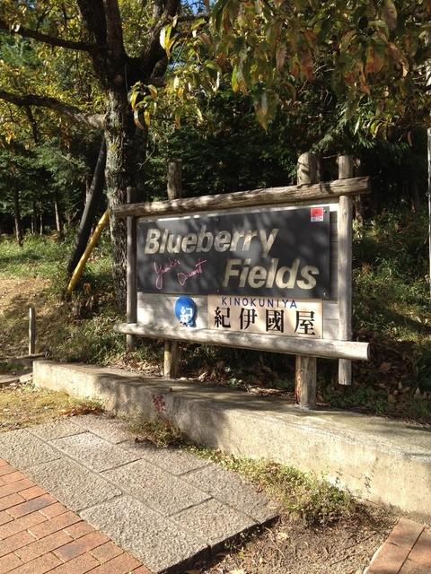 Blueberry Fields 紀伊國屋 - 看板