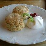 Cream Tea - 紅茶スコーン