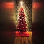 そむりえーるの台所 御器所ブランルージュ - ゚.+εクリスマスも近いですねぇ~з゚+.