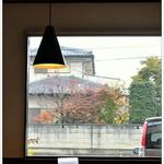 syokudo ぱくり亭 - 小上がりからの店内